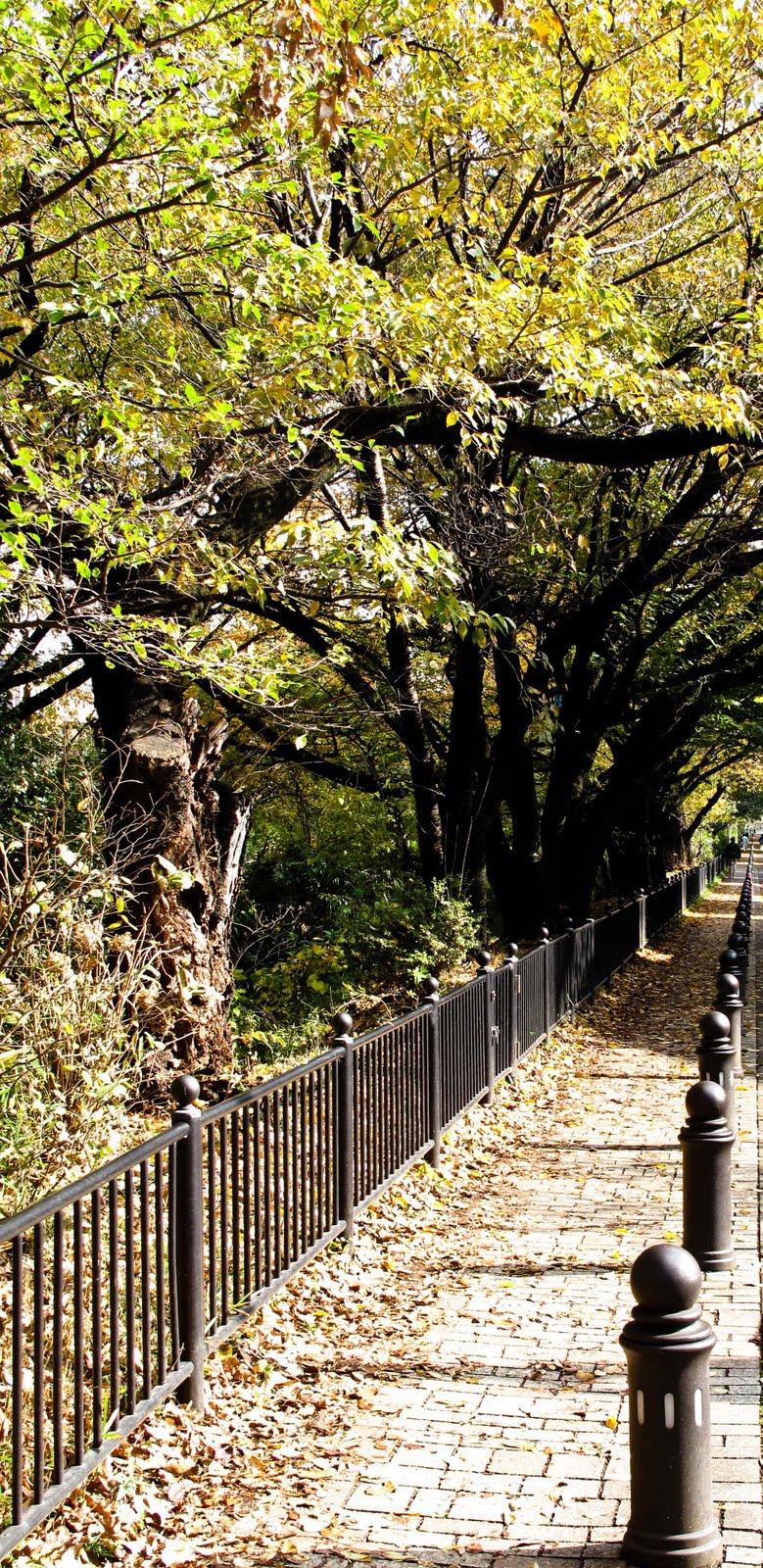 Studio Ghibli Museum in Tokyo | Rhys\' Pieces