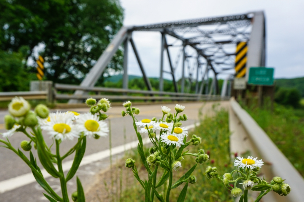 Natural Dam Bridge (4)