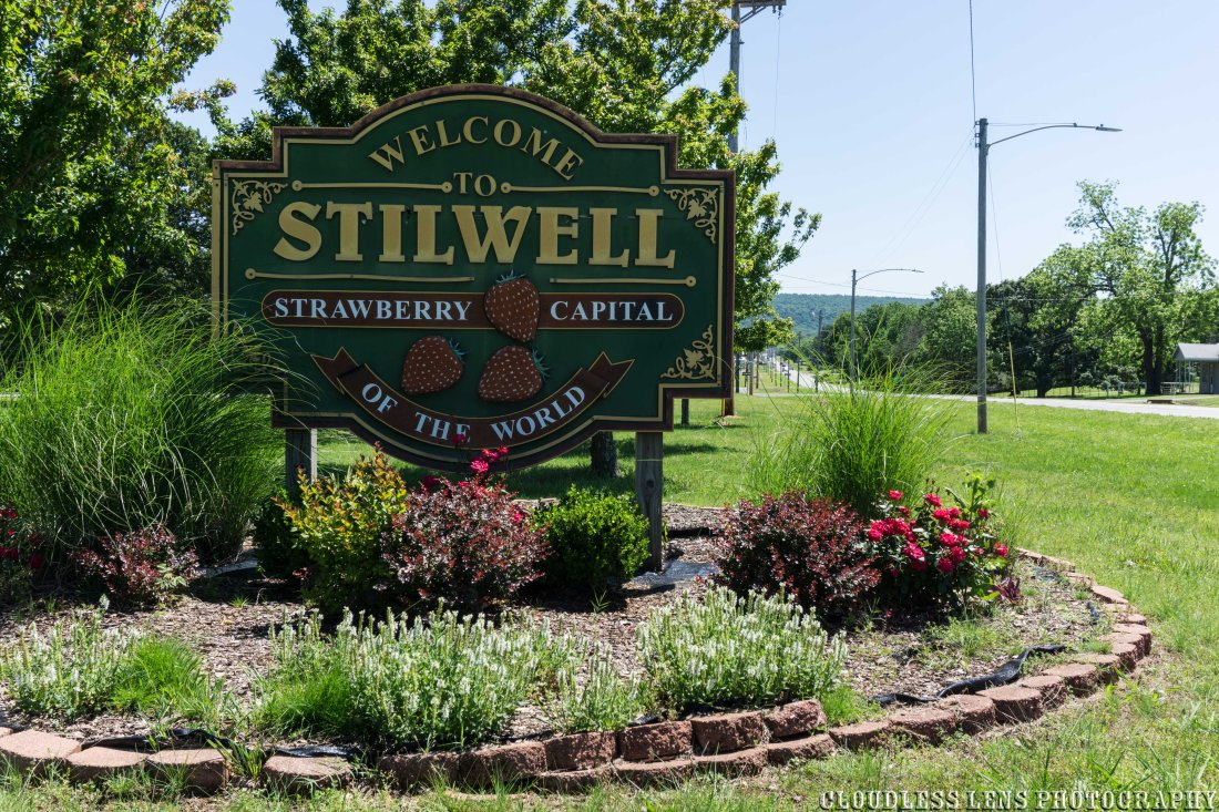Stilwell Strawberry-40